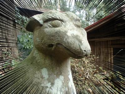 10埼玉県大里郡寄居町大字風布 釜山神社 (3)