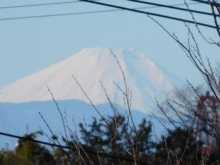 富士山 1.1