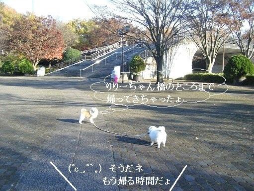 リリーちゃん橋
