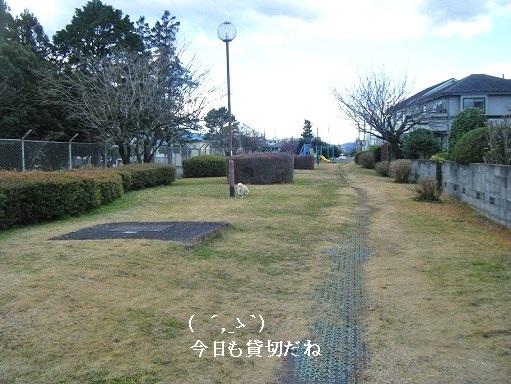 DSCF3760.jpg