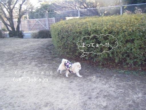 DSCF4229.jpg