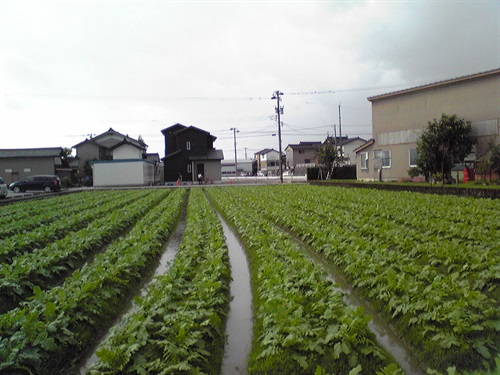 2016_10_08-09_高岡03_191_2017_01_02