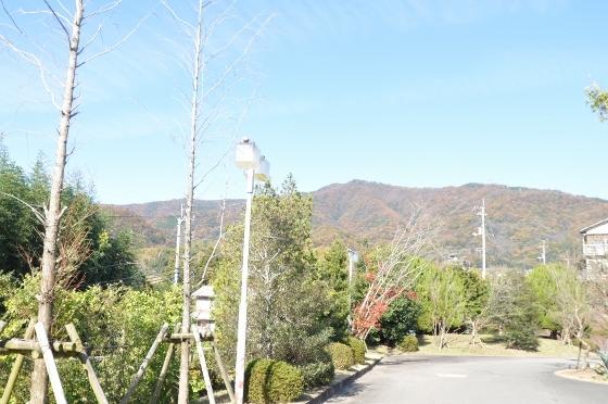 D90naoyuki 013 (560x372)