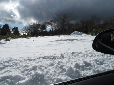 冬の伊豆高原旅行 1