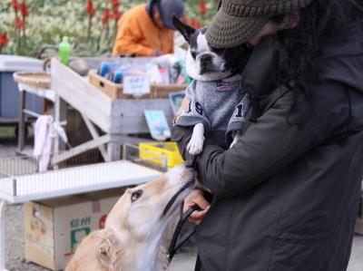 観光編 冬の伊豆高原旅行