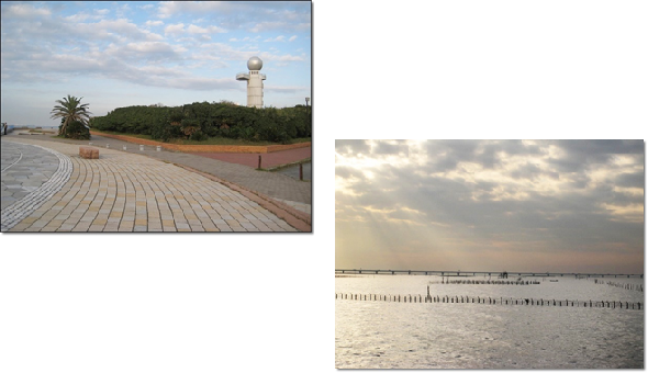 お日さま散歩の海浜公園
