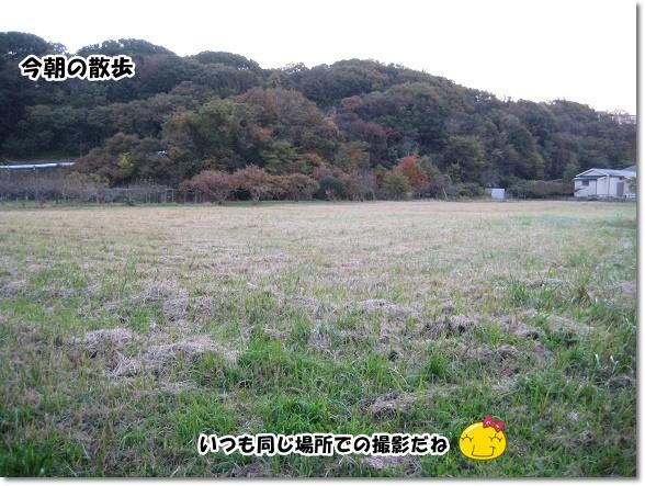 IMG_6993-2.jpg