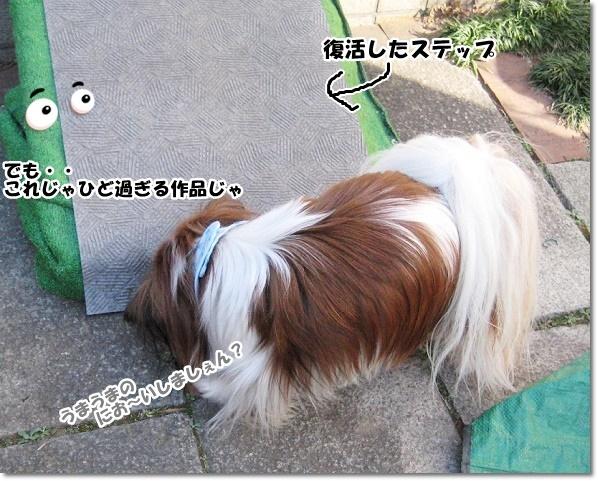 IMG_7890-3.jpg