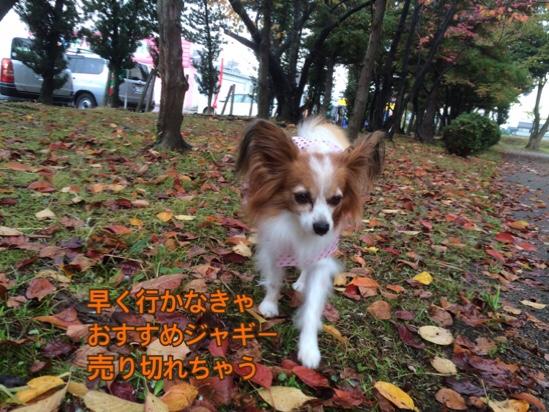 fc2blog_2016111421080312f.jpg