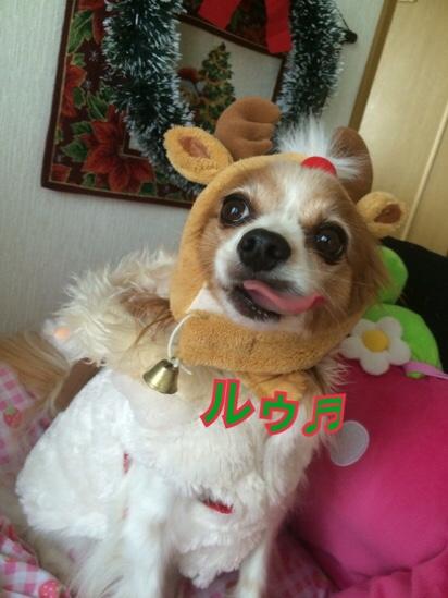fc2blog_20161224175705f9f.jpg