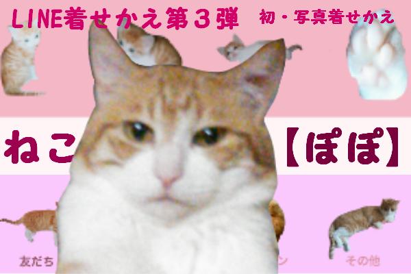 ねこ【ぽぽ】