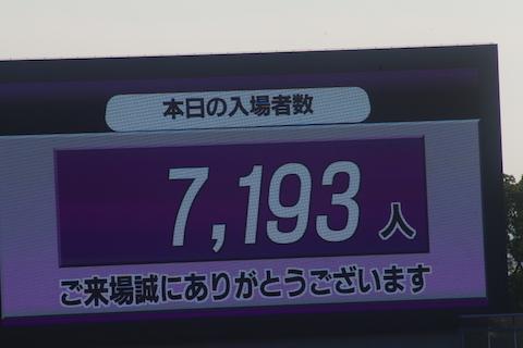 IMGP7548.jpg
