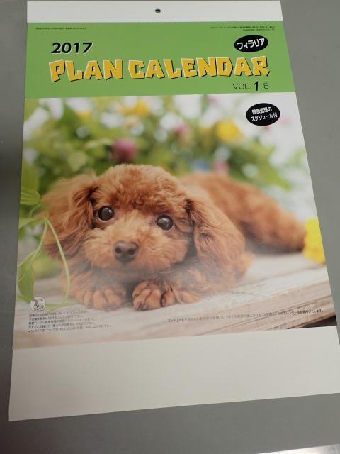 s_プロハートカレンダー写真