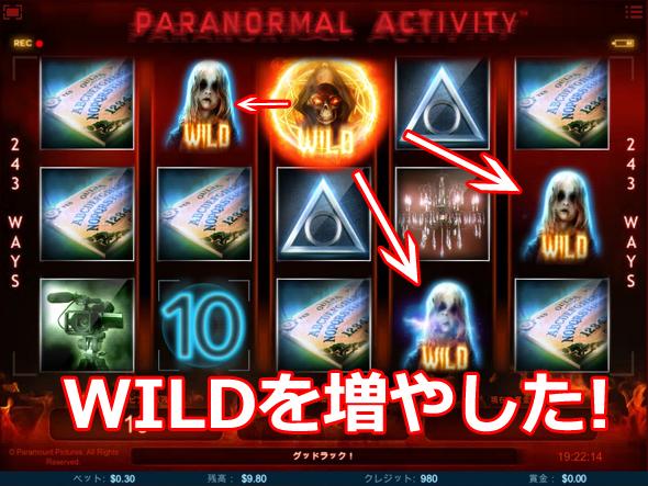 paranormal5.jpg