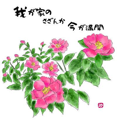 山茶花02
