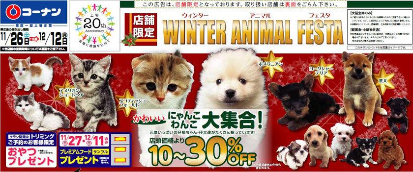 ウィンターアニマルフェスタ コーナン 犬猫セール
