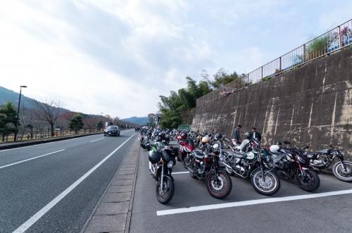 KMGP4839-1.jpg