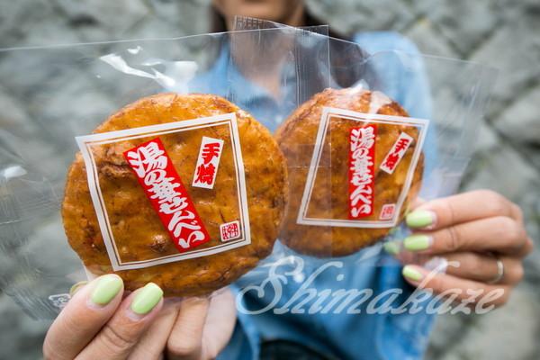 プーケットしまかぜ案内人の日本旅行(秋)2016年