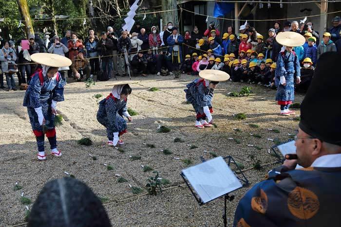 大和神社 御田植祭5