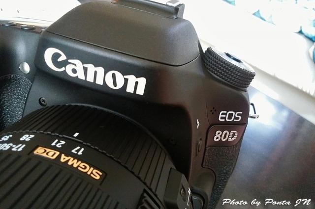 camera1611-0001.jpg