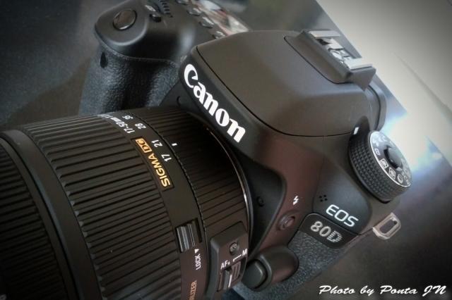 camera1611-0002.jpg
