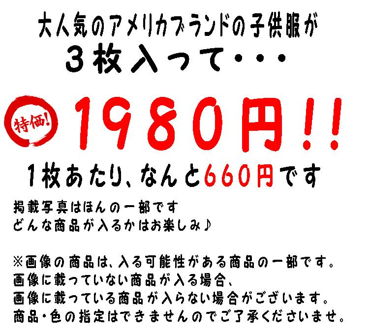 f17b-4t_02.jpg