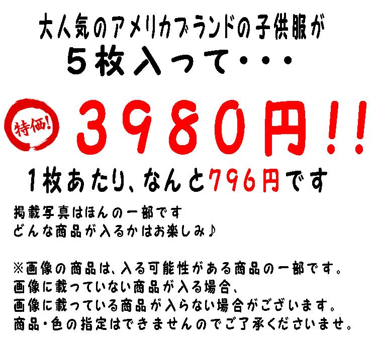 f17g-2t_02.jpg
