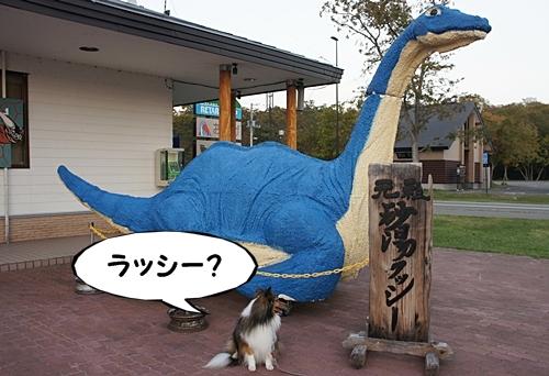 かわゆ10