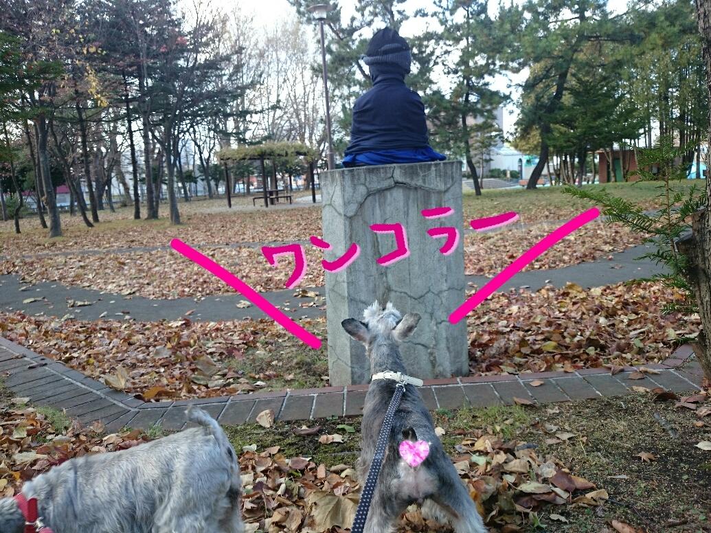 201611220043505a5.jpg