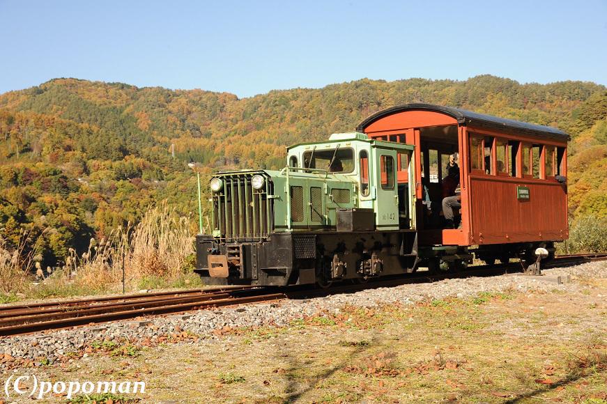 DSC_5686 - コピー2016 11 5 王滝森林鉄道 871 580 popoman