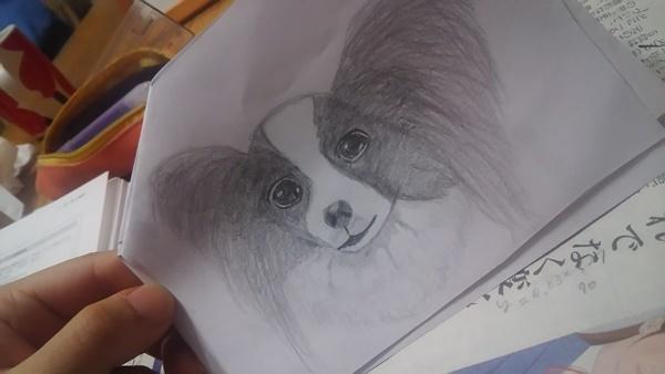 お姉ちゃんが描いたルビーの絵