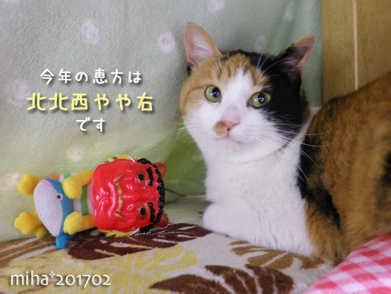 miha17-02-22.jpg