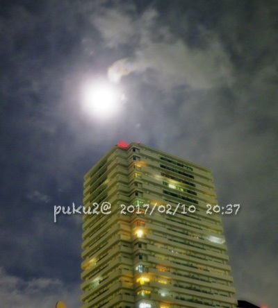 moon170210-1s.jpg