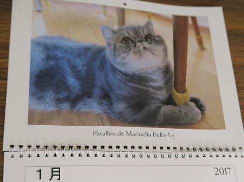 21)カレンダー1月