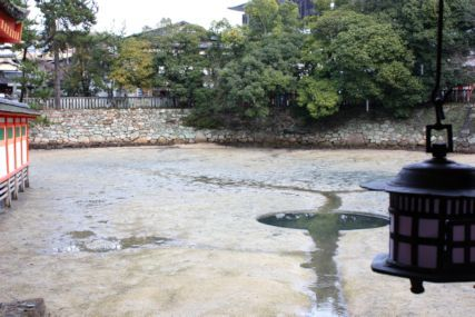 20170108厳島神社3
