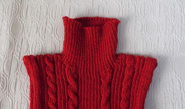 赤いセーター二重衿201611