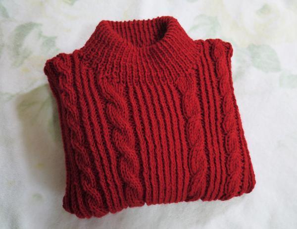赤いセーター保存201611