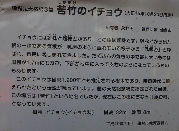 P1160002.jpg