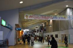 20113.jpg
