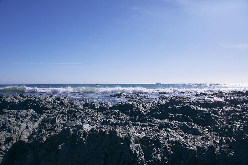 伊良湖の海