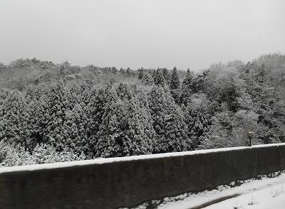 2017-01-14-62.jpg