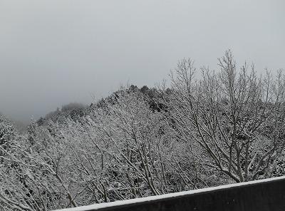 2017-01-14-63.jpg
