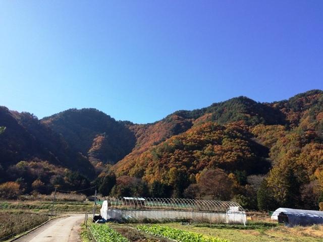 仁熊城(筑北村) (121)