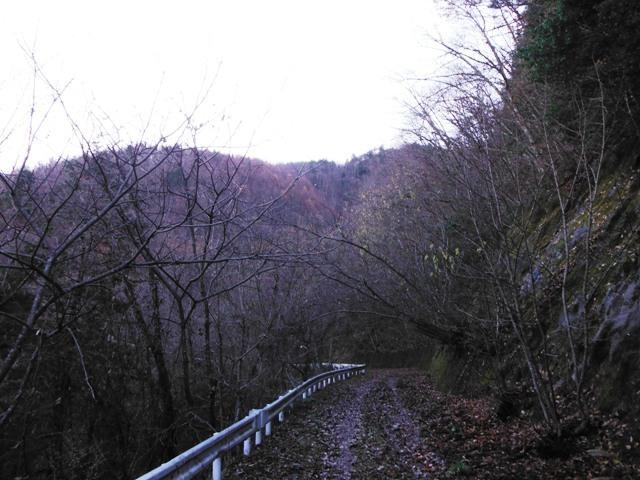 岩原古城(さるが城) (6)