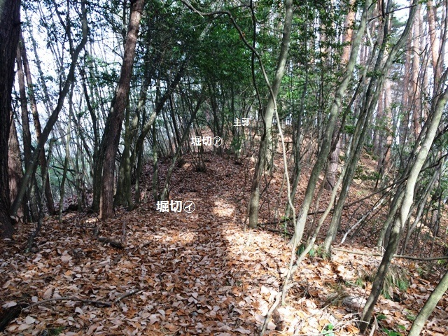 平城(城の山) (37)