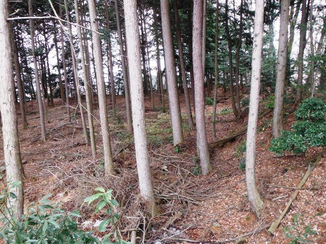 小黒城(伊那市) (26)