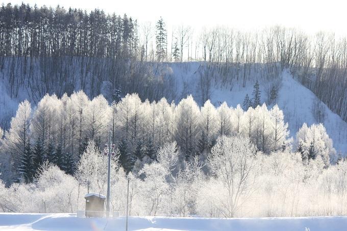 霧氷 (3)
