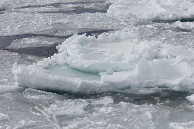 流氷 (2)