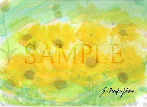 flower006b.jpg