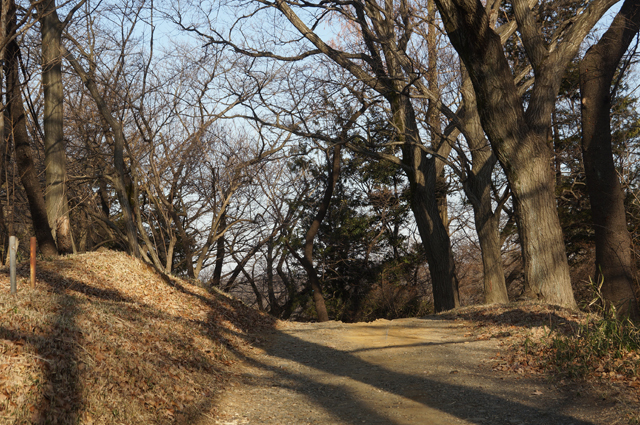 平山城址公園の道